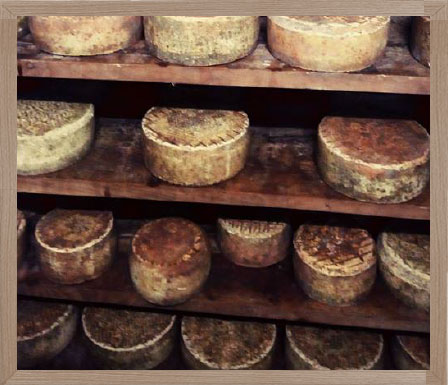 Fasi di lavorazione formaggi